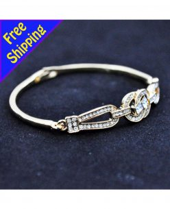 14K Gold Plated with high quality Zircon Daisy Chain Stylish bangle bracelet
