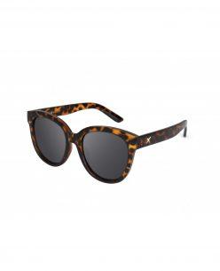 Sunglasses Style P01104_1